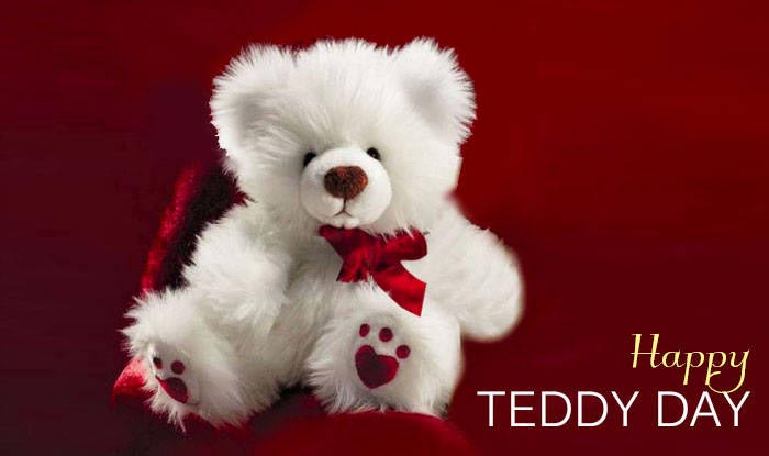 teddy day image-2
